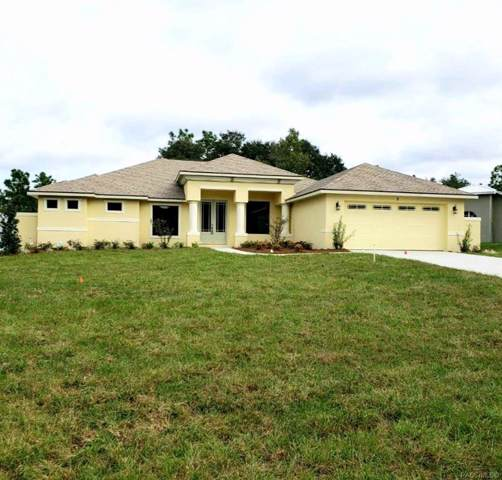 2 Hackberry Court S, Homosassa, FL 34446 (MLS #787810) :: Pristine Properties
