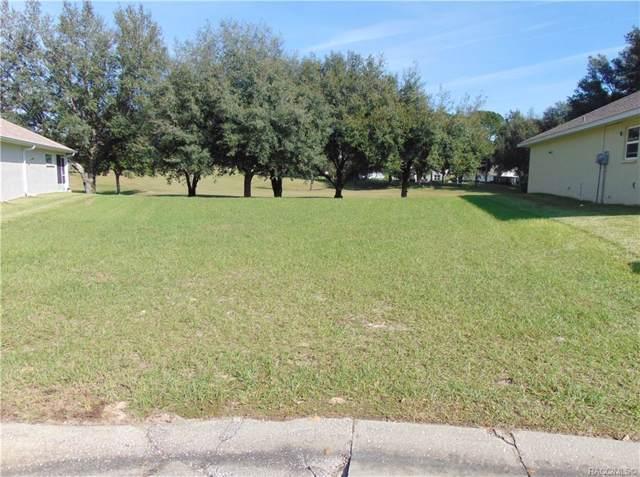 593 W Player Path, Beverly Hills, FL 34465 (MLS #787880) :: Plantation Realty Inc.