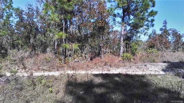 5601 N Zack Terrace, Dunnellon, FL 34434 (MLS #787885) :: Plantation Realty Inc.