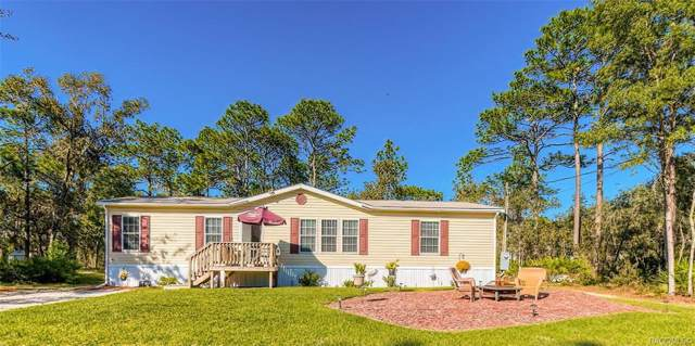 6587 W Renee Lane, Homosassa, FL 34446 (MLS #787893) :: 54 Realty