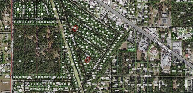 2509 Kirt Street, Inverness, FL 34452 (MLS #787895) :: Pristine Properties