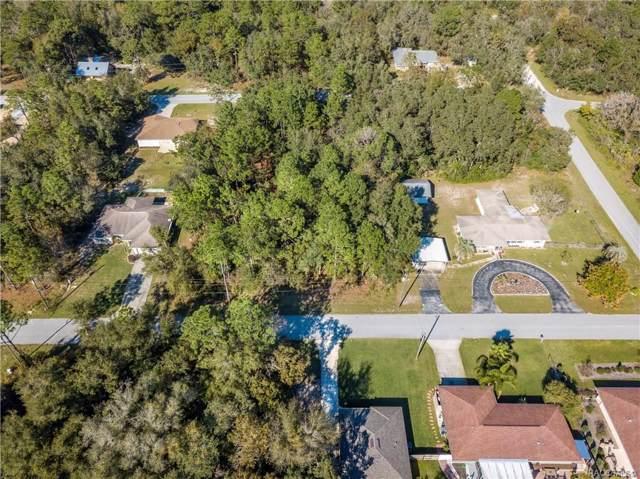 3131 E Rogers Street, Inverness, FL 34453 (MLS #787904) :: Pristine Properties