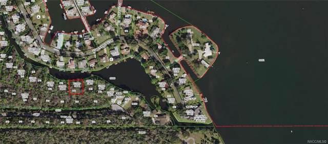 10569 W Crystal Waters Path, Crystal River, FL 34429 (MLS #787916) :: 54 Realty