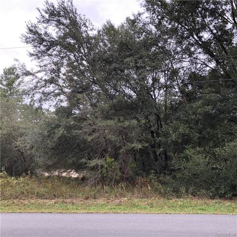 1749 E Humphrey Lane, Hernando, FL 34442 (MLS #787932) :: Plantation Realty Inc.