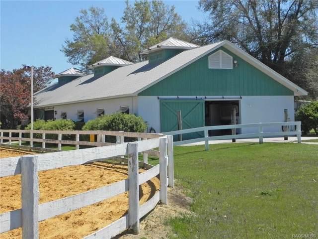 655 N Cherry Pop Drive, Inverness, FL 34453 (MLS #787947) :: Plantation Realty Inc.