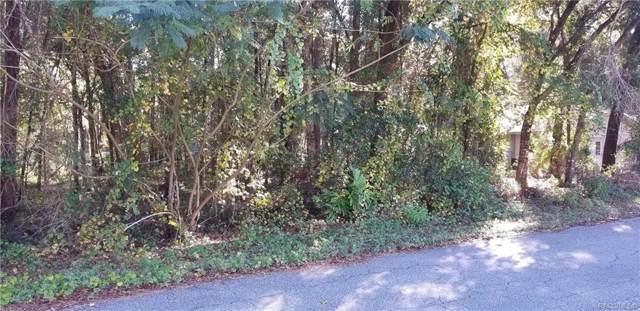 3959 S Ivanhoe Terrace, Inverness, FL 34452 (MLS #787992) :: Plantation Realty Inc.