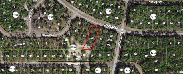9402 N Athenia Drive, Citrus Springs, FL 34434 (MLS #788041) :: 54 Realty