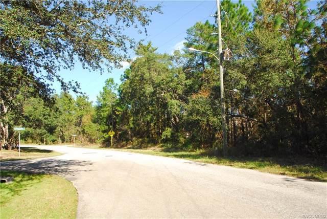 8 and 10 Saintpaulia Street, Homosassa, FL 34446 (MLS #788044) :: Plantation Realty Inc.