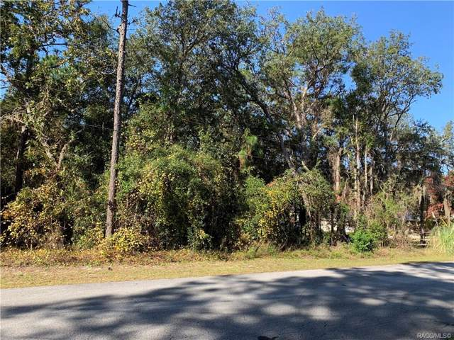 1114 Rabeck Avenue, Lecanto, FL 34461 (MLS #788086) :: Plantation Realty Inc.