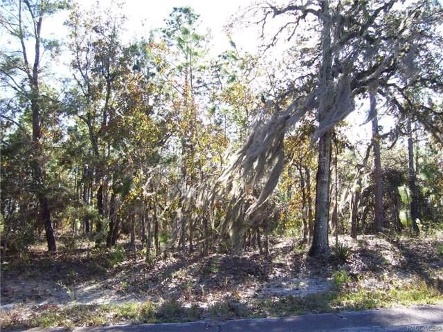 2618 W Laredo Drive, Citrus Springs, FL 34433 (MLS #788101) :: 54 Realty