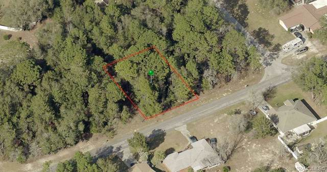 1037 W Almont Place, Citrus Springs, FL 34434 (MLS #788115) :: 54 Realty