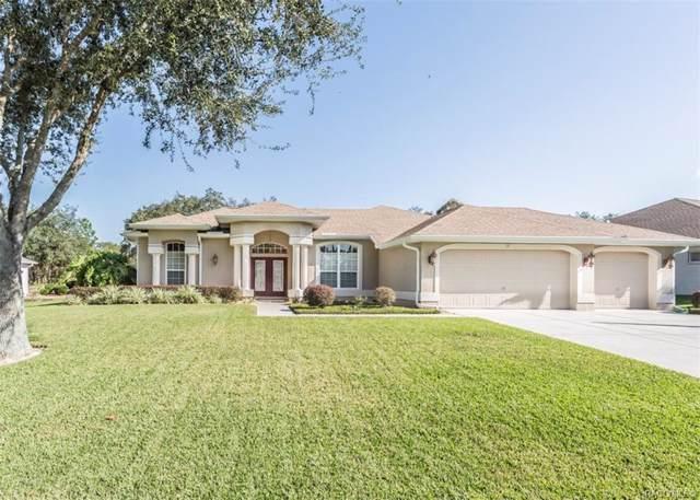 28 Black Willow Street, Homosassa, FL 34446 (MLS #788126) :: Plantation Realty Inc.