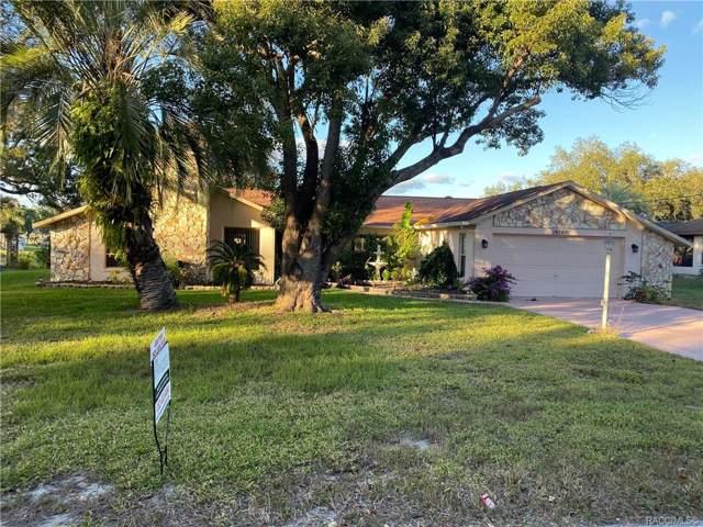 9269 Dunkirk Road, Spring Hill, FL 34608 (MLS #788143) :: Pristine Properties