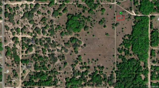 1016 Farmdale Avenue, Inverness, FL 34453 (MLS #788157) :: Pristine Properties
