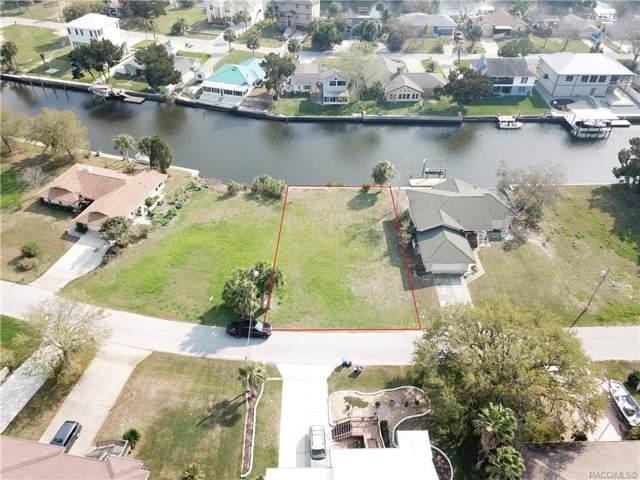 11750 W Coquina Court, Crystal River, FL 34429 (MLS #788175) :: Plantation Realty Inc.