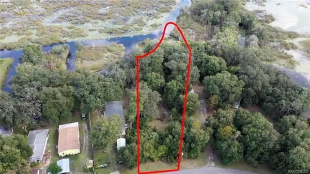2843 N Wheaton Point, Hernando, FL 34442 (MLS #788182) :: Plantation Realty Inc.