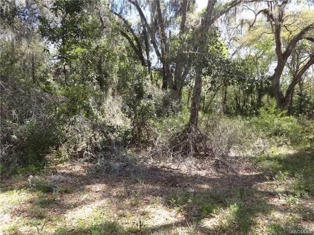 6859 N Beechnut Loop, Hernando, FL 34442 (MLS #788192) :: Plantation Realty Inc.