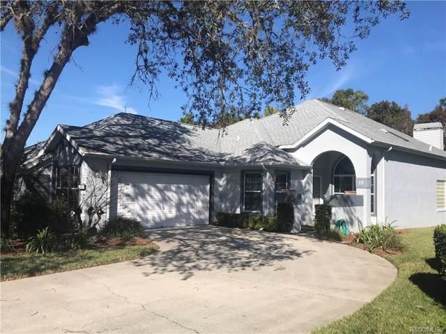 13 Byrsonima Court S, Homosassa, FL 34446 (MLS #788195) :: Plantation Realty Inc.