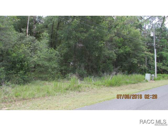 6647 E Lynn Street, Inverness, FL 34452 (MLS #788200) :: Plantation Realty Inc.