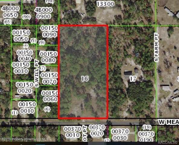 6485 W Meadow Street, Homosassa, FL 34446 (MLS #788236) :: Plantation Realty Inc.