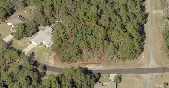 10021 N Langdon Road, Citrus Springs, FL 34434 (MLS #788257) :: Plantation Realty Inc.