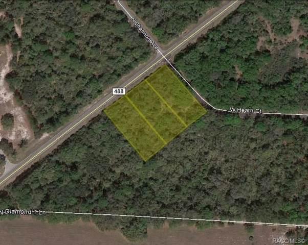 10902 W Heath Court, Crystal River, FL 34428 (MLS #788300) :: 54 Realty
