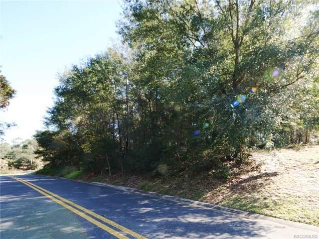 319 Vassar Street, Inverness, FL 34452 (MLS #788307) :: Plantation Realty Inc.