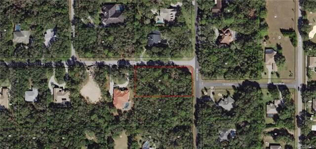 1412 N Abalone Terrace, Hernando, FL 34442 (MLS #788309) :: Pristine Properties