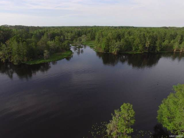 11637 N Hume Point, Dunnellon, FL 34434 (MLS #788314) :: Plantation Realty Inc.