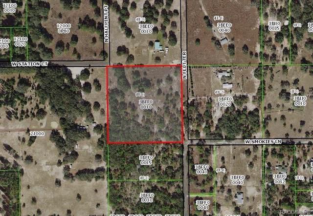 11436 N Felt Terrace, Dunnellon, FL 34434 (MLS #788325) :: Plantation Realty Inc.