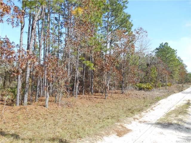 7151 W Crinoline Lane, Dunnellon, FL 34433 (MLS #788336) :: Plantation Realty Inc.