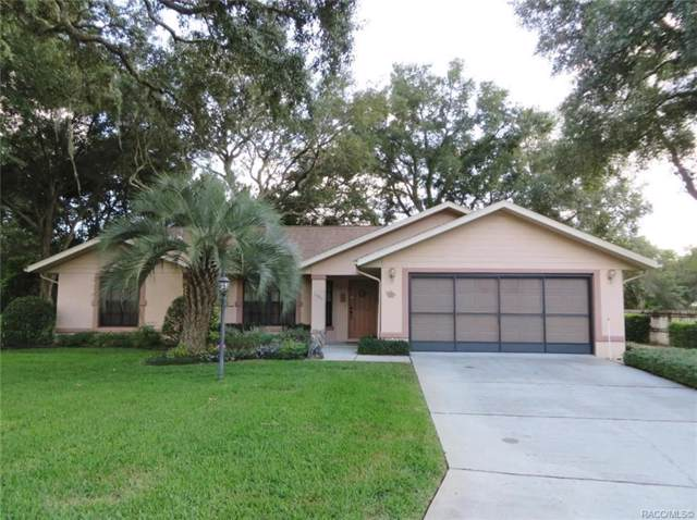 1390 E Silver Thorn Loop, Hernando, FL 34442 (MLS #788342) :: Plantation Realty Inc.