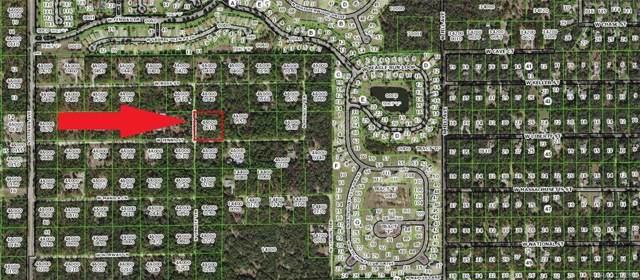 1527 W Jenny Street, Lecanto, FL 34461 (MLS #788356) :: Pristine Properties