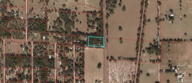 Lot 1 SE 70th Lane, Morriston, FL 32668 (MLS #788359) :: Pristine Properties