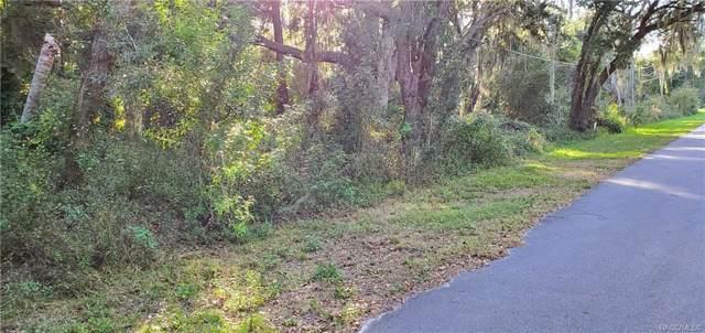 1611 Birch Street, Lake Placid, FL 33852 (MLS #788368) :: Plantation Realty Inc.