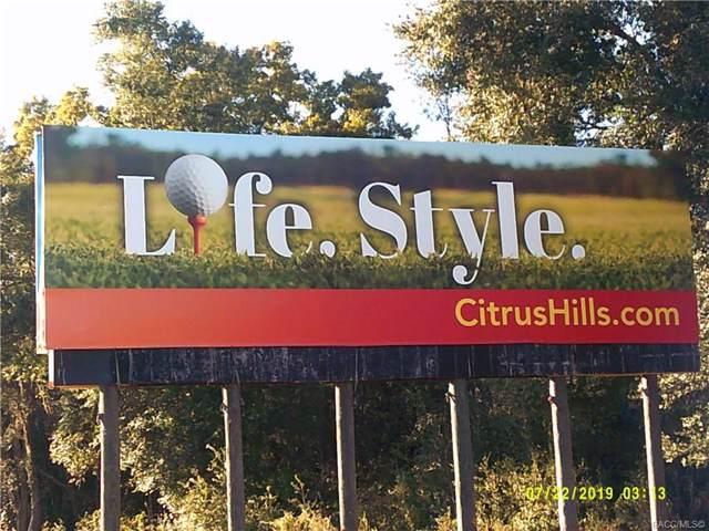 1403 E Mckinley Street, Hernando, FL 34442 (MLS #788513) :: Pristine Properties
