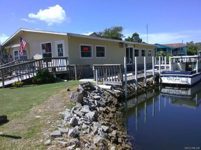 2130 S Waterman Drive, Crystal River, FL 34429 (MLS #788704) :: Plantation Realty Inc.