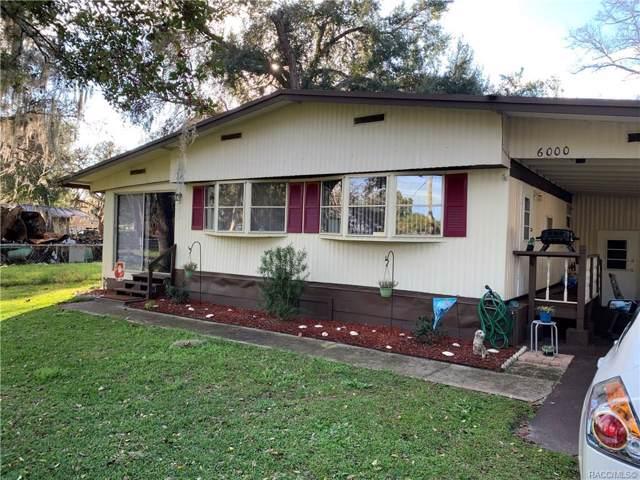 6000 N Blue Bream Terrace, Hernando, FL 34442 (MLS #788721) :: Plantation Realty Inc.