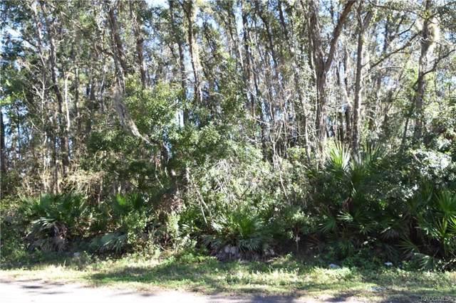 6748 W Linden Drive, Homosassa, FL 34446 (MLS #788725) :: Plantation Realty Inc.