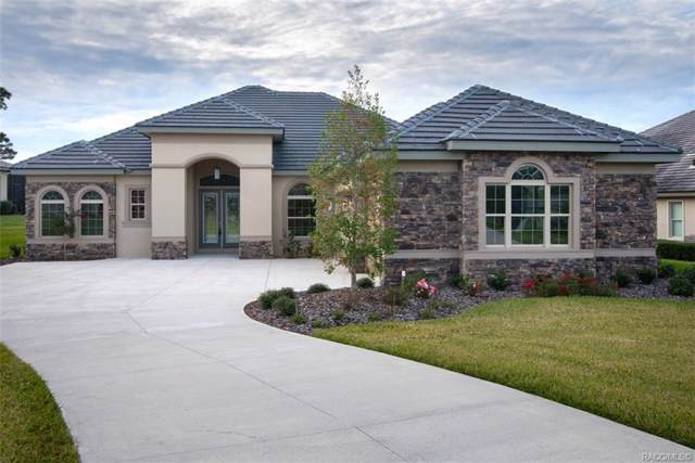 3131 W Shadow Creek Loop #9, Lecanto, FL 34461 (MLS #788766) :: Plantation Realty Inc.