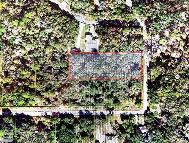 10334 N Cork Fir Terrace, Crystal River, FL 34428 (MLS #788773) :: Pristine Properties
