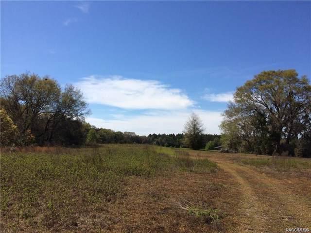 0 SW 36th Street, Dunnellon, FL 34431 (MLS #788818) :: Plantation Realty Inc.