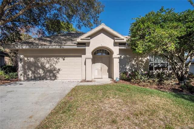 3745 W Augusta Path, Lecanto, FL 34461 (MLS #788827) :: Plantation Realty Inc.