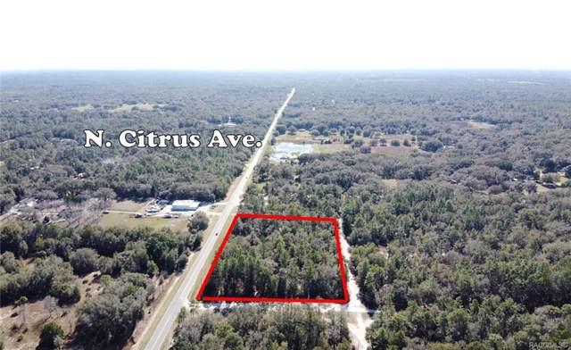 9609 N Morano Terrace, Crystal River, FL 34428 (MLS #788842) :: Plantation Realty Inc.