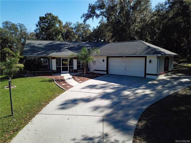 3370 E Chichester Court, Hernando, FL 34442 (MLS #788845) :: 54 Realty