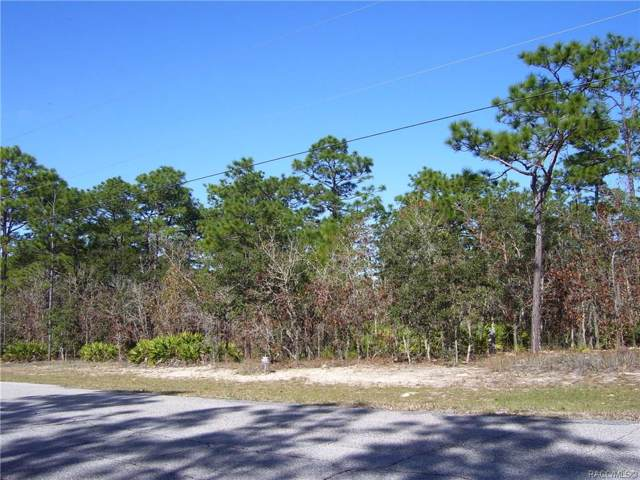 6301 W Cavalry Lane, Beverly Hills, FL 34465 (MLS #788855) :: Plantation Realty Inc.