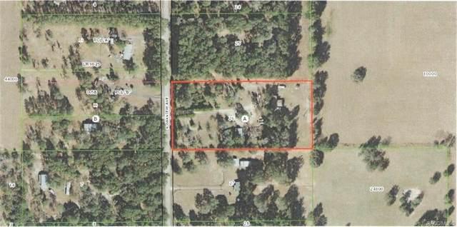 11961 S Oakview Avenue, Floral City, FL 34436 (MLS #788867) :: Plantation Realty Inc.