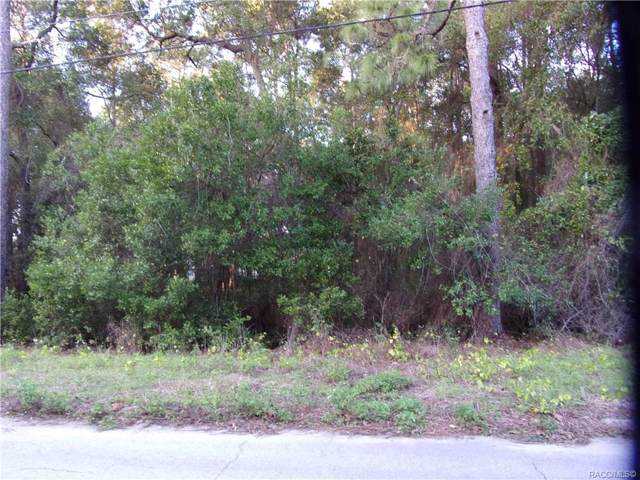 512 Pineaire Street, Inverness, FL 34452 (MLS #788871) :: Plantation Realty Inc.