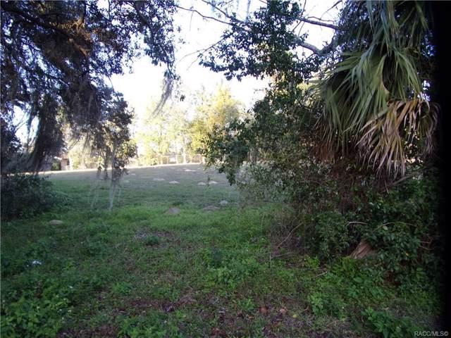 3731 E Foxwood Lane, Inverness, FL 34452 (MLS #788878) :: Plantation Realty Inc.
