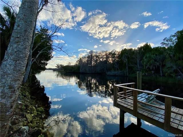 48 Magnolia Avenue, Yankeetown, FL 34498 (MLS #788889) :: Plantation Realty Inc.